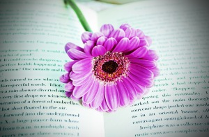 flower-on-the-book