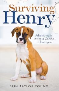 Surviving Henry mockup.indd