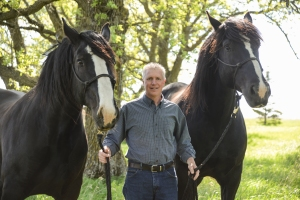 les with horses