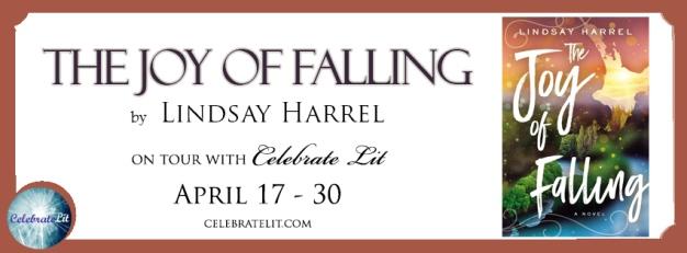 The-Joy-of-Falling.jpg